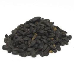 Slnečnica černá 25kg