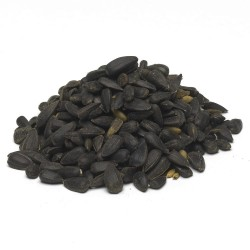 Slnečnica černá 4kg